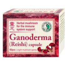 Ganoderma (Reishi) kapszula, 60db, 400mg